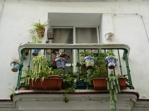 Mijn balkonnetje